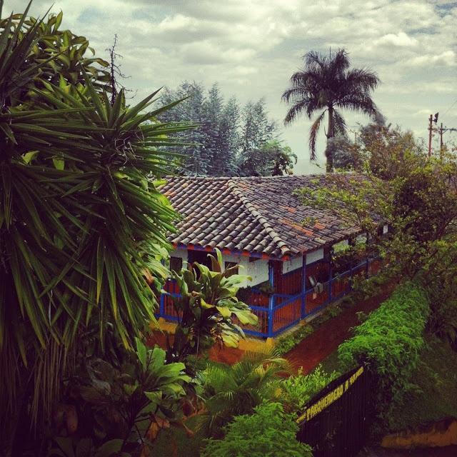 Colombia coffee belt