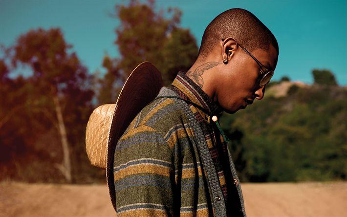 Descargar fondos de pantalla Pharrell Williams, 4k, retrato, cantante Estadounidense, American celebridades
