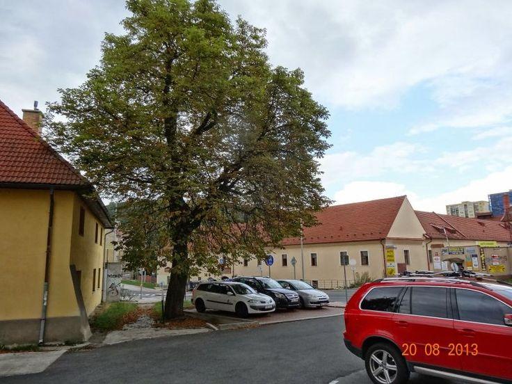 Dolní Michle