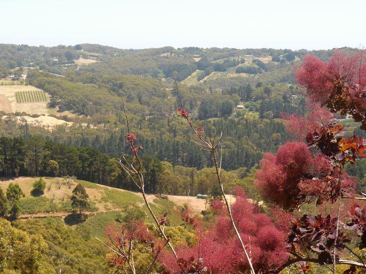 Carey Gully, Adelaide Hills