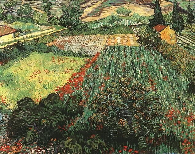 Vincent van Gogh: The Paintings (Field with Poppies)