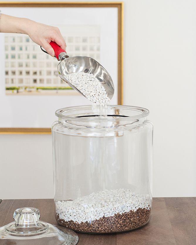 Pouring rocks terrarium