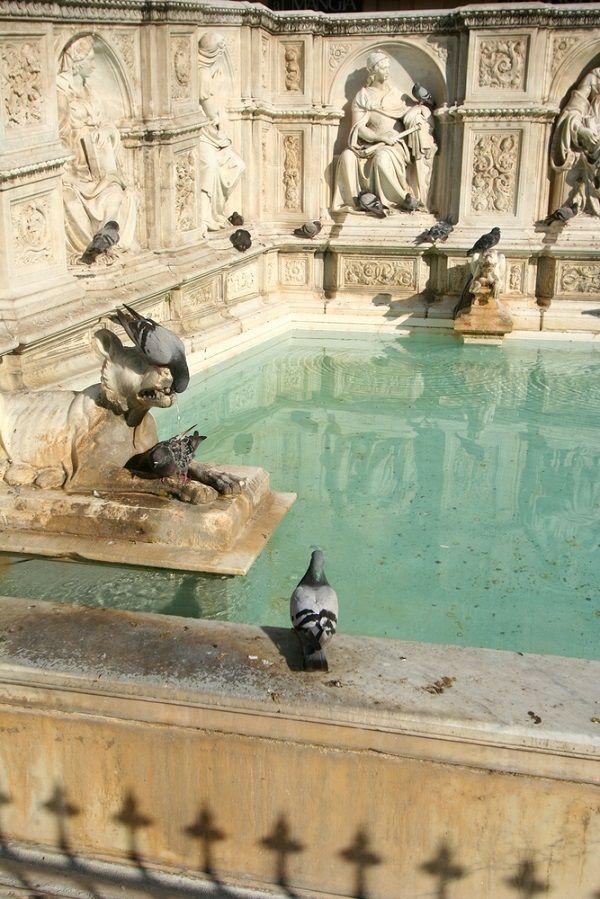 Fonte Gaia op het Piazza del Campo in Siena, een van de mooiste pleinen in Italië