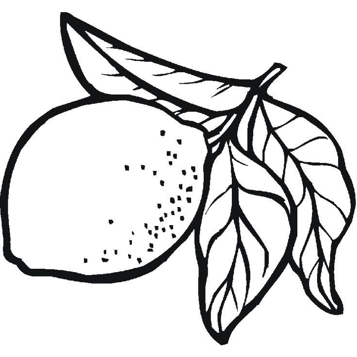 Imagenes De Frutas Para Colorear | Dibujos de frutas: limones