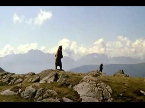 L'Ours de Jean Jacques Annaud/ traumatisme de l'enfance aka bambi/ film culte/ pas plus salopard que tcheky karyo dans ce film!!!