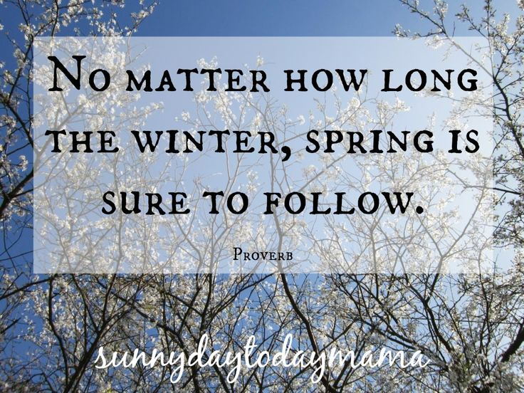 {life} No matter how long the winter, spring is sure to follow. ~Proverb http://sunnydaytodaymama.blogspot.co.uk/2016/04/life-no-matter-how-long-winter.html