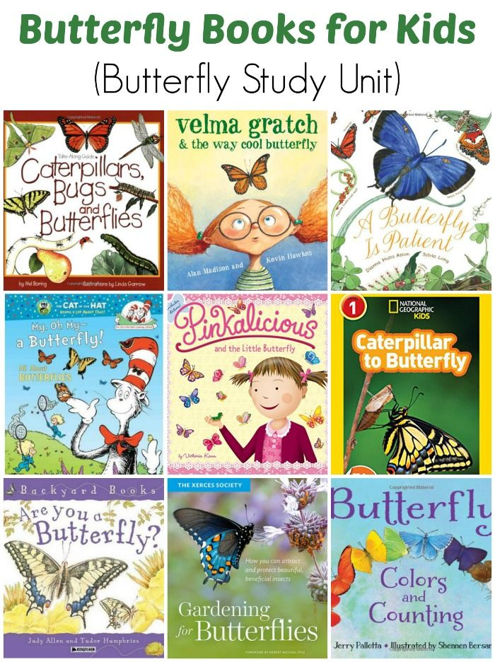 Butterfly Books for Children (Butterfly Study Unit) - Perfect for children learning about butterflies or just in love with them.
