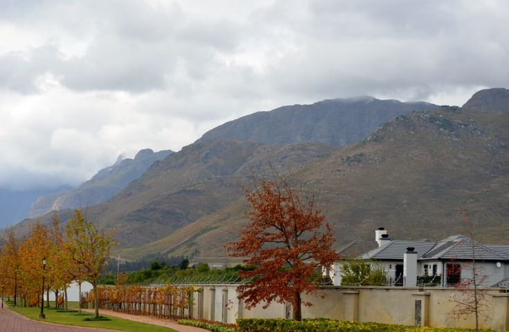 Val de Vie Estate - located between Paarl and Franschoek, has state-of-the-art security measures includes biometric access, electric fencing, CCTV, on-site patrols and 40 thermal IP cameras that cover the entire perimeter of Val de Vie. #ValdeVie #security #electricfencing #CCTV