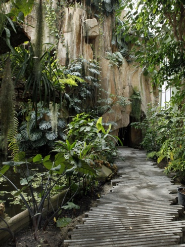183 best images about jardin des plantes paris on for Au jardin botanic gardens