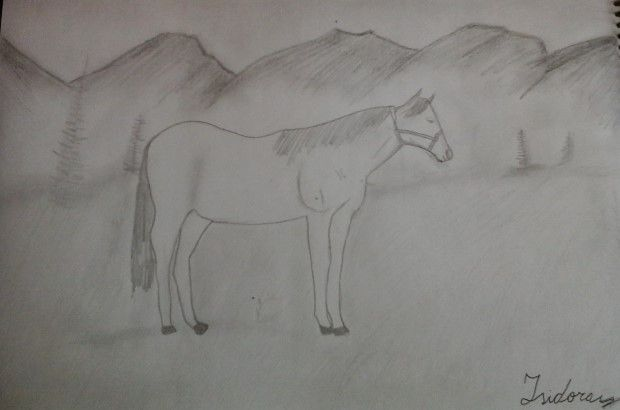 Horse; Caballo By: Ihzii