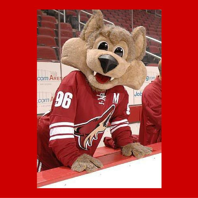 @hboxsports: @NJDevil00 @BaileyLAKings @NordyWild @ThunderBugTBL @StanleyCPanther @CanucksFIN say hello to our new team member! http://t.co/kI9zJsA8zh