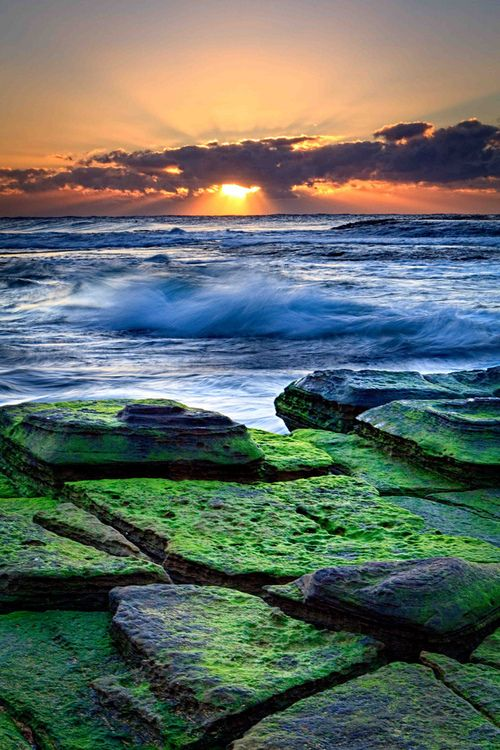 Turimetta Beach, Sydney   I love the contrasting colors! Looks like lights are used to brighten the moss.