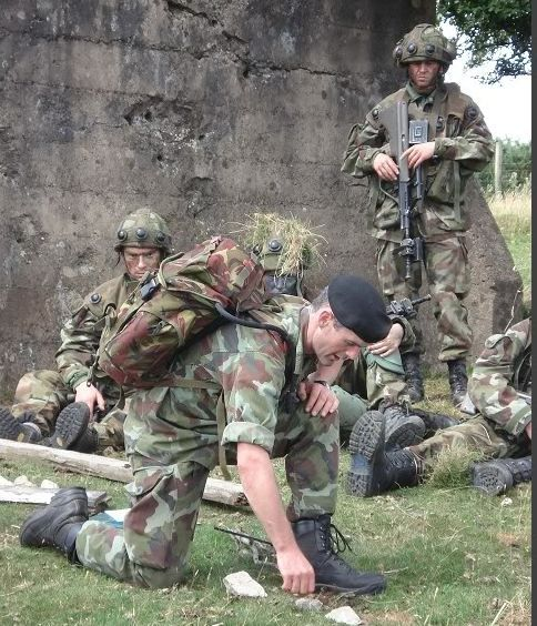 Gym Equipment Vietnam: 17 Best Images About Irish Defence Forces On Pinterest