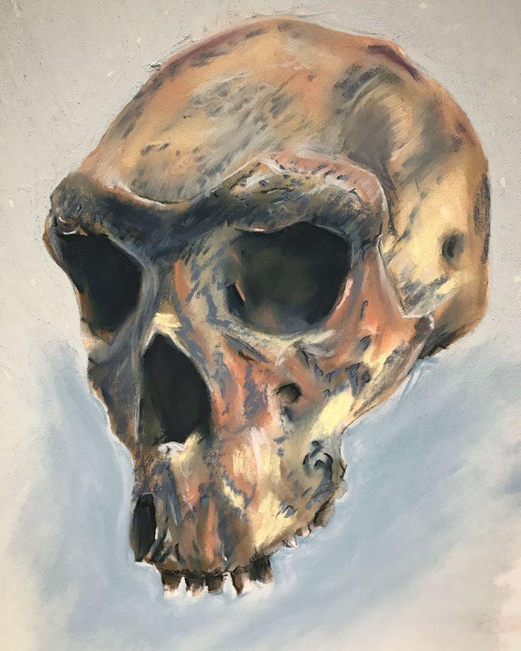 Neanderthal Skull - Pastels