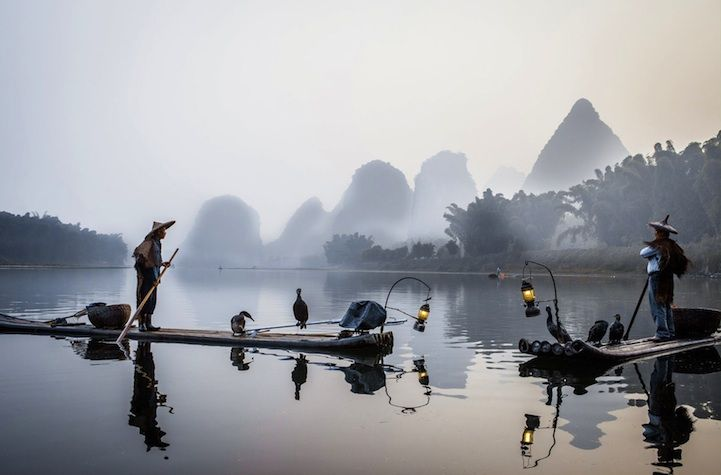 Stellar Standouts in 2012 National Geographic Photo Contest - Fisherman: Cormoran fisherman on the Li river, Yangshuo, China