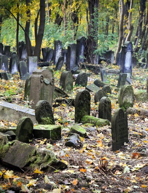 Zwiedzanie Warszawy z przewodnikiem śladami dziedzictwa żydowskiego. W programie m. in. getto warszawskie - miejsca pamięci oraz Muzeum Polin.