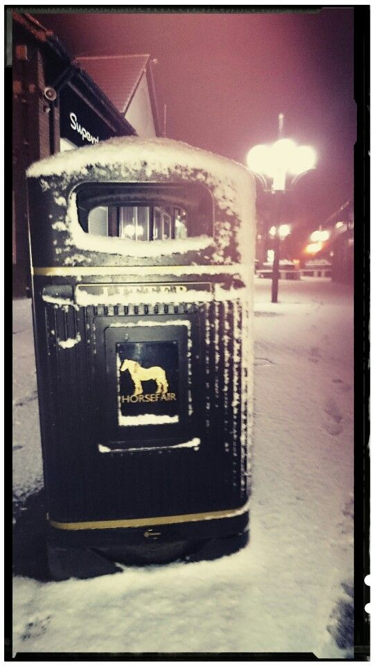 Litter Bin, Horse Fair - Wisbech
