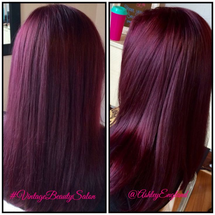Beautiful rich eggplant purple hair