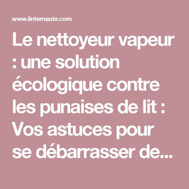 Le nettoyeur vapeur : une solution écologique contre les punaises de lit : Vos astuces pour se débarrasser desnuisibles - Linternaute