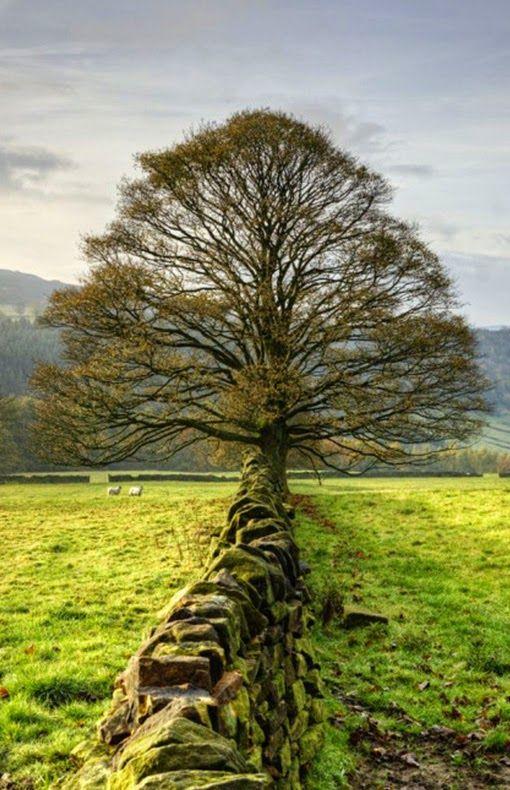 Peak District, England http://exampracticequestions.com/70-410/