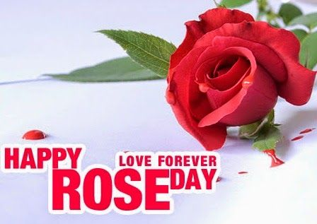 Rose Day Best Wishes 2017 Messages 7th February Quotes FB Status SMS