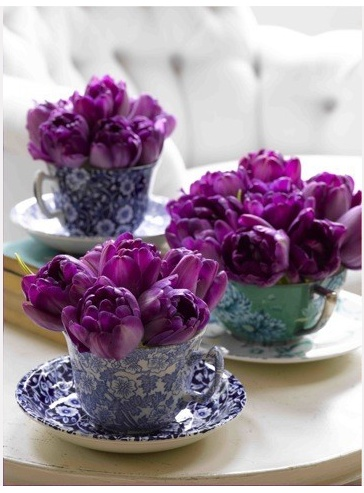 tulips in vintage tea cups