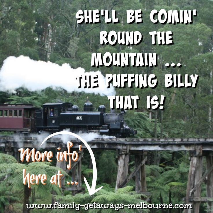 Ride Puffing Billy through the Dandenongs - best fun you can have #puffingbilly #victoria #dandenong #daytrip #thingstodo