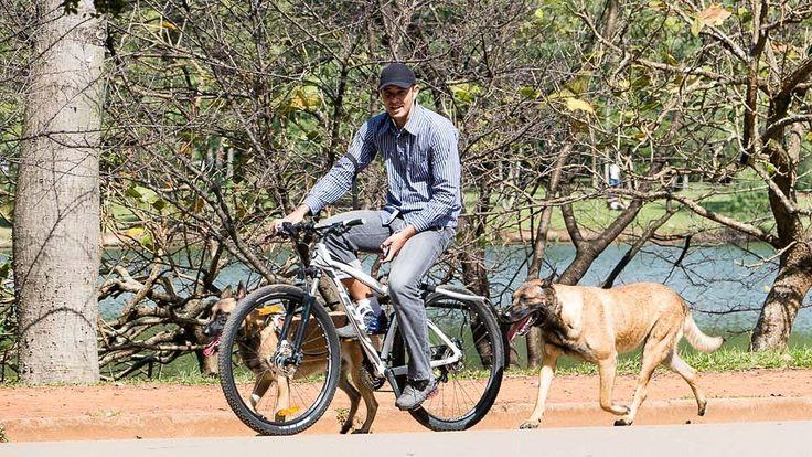 Sempre que vou no parque do Ibirapuera vejo esse rapaz andando de bicicleta com essa dupla de cães da raça Malinois. Quem me conhece sabe que eu admiro muito esses cães que normalmente são vistos em trabalhos como busca e resgate entre outros serviços que salvam vidas humanas. Não conheço o rapaz nem os cães mas sempre que os vejo percebo uma sincronia entre eles numa rotina de exercícios bacana com muita concentração e leveza. Esse é um ótimo exemplo de cães fortes com muita disposição que…
