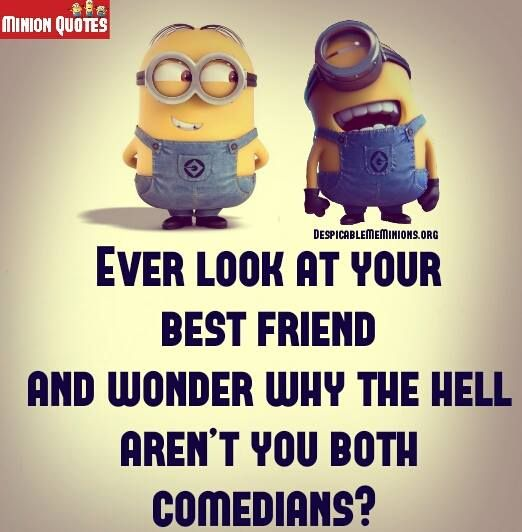 Funny Friendship Quotes - Ever look at your best friend