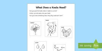 What Does A Koala Need? Activity Sheet-Australia