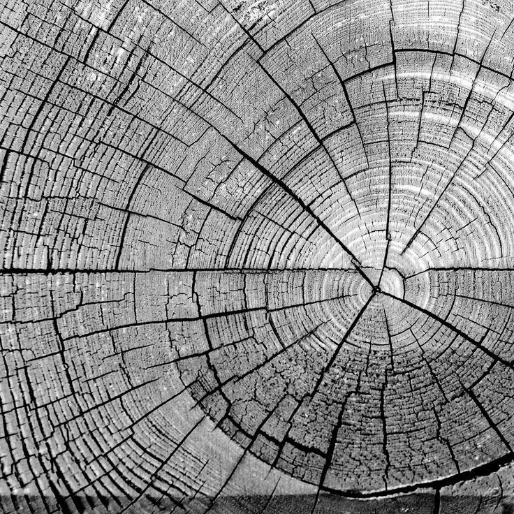 Best 25  Pattern photography ideas on Pinterest | Line photography ...
