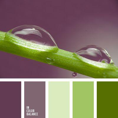 Color Palette No. 1945