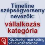 Legyszebb Magyar Timeline verseny – vállalkozás kategória