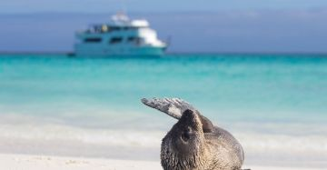Quito and the Galapagos Travel Package - Ecuador Tour