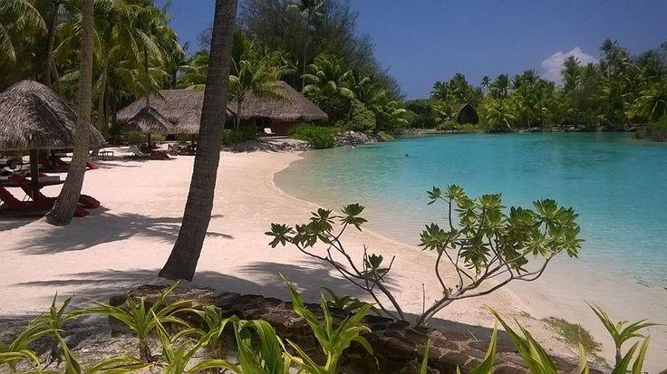 Four Seasons Resort Bora Bora (Bora Bora, Fransk Polynesien) - Feriested - anmeldelser og bedømmelser - TripAdvisor