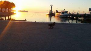 Konstanz - Hafen und Imperia