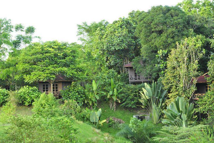 Photos de Sepilok Forest Edge Resort