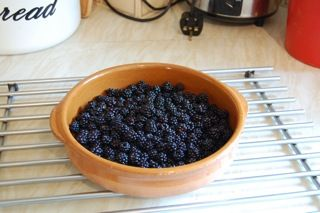 Blackberry vinegar recipe. I'd always drink this hot when I had a cough or cold as a child