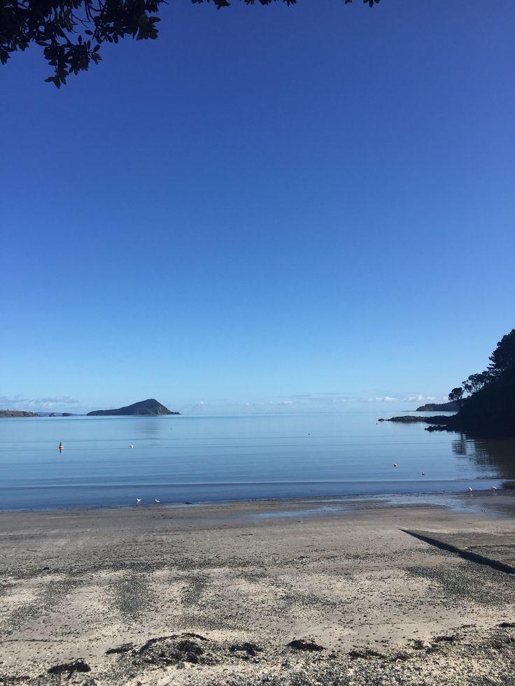 Waheke Island, New Zealand Worth the $36
