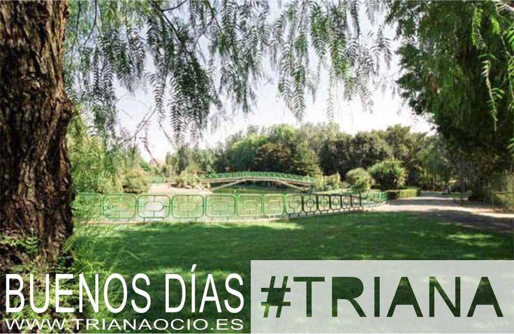 Naturaleza y descanso en el Parque de los Príncipes. ¡Buenos días #Triana!