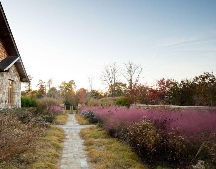 nelson byrd woltz / native meadow, albemarle county