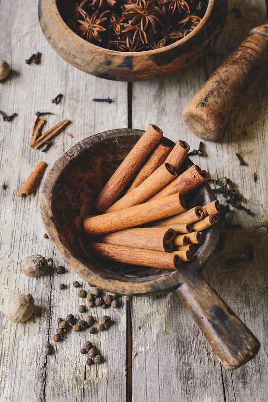 Cinnamon Sticks and Anise by PavelGr - Pavel Gramatikov | Stocksy United