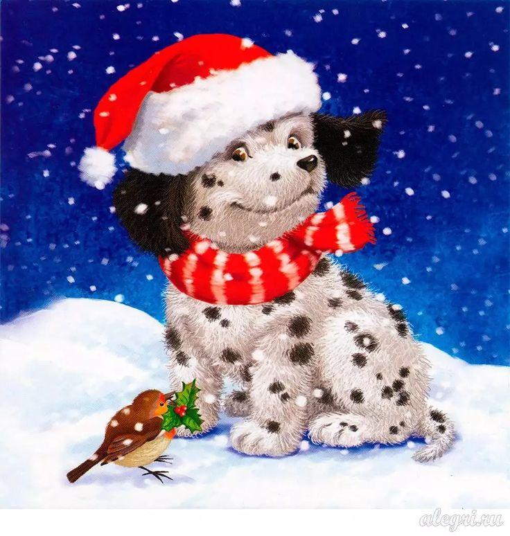 Отдых, новогодняя открытка с собаками