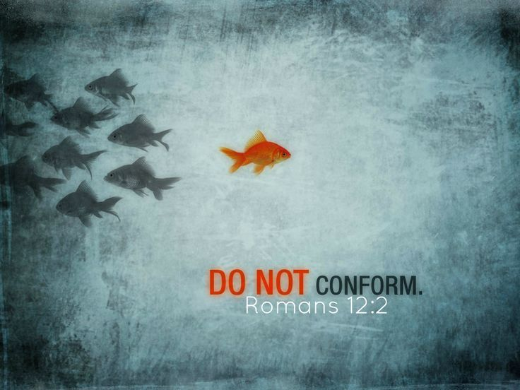 Do not conform to the pattern of this world, but be transformed by the renewing of your mind. Then you will be able to test and approve what God's will is —his good, pleasing and perfect will.                                                                     Romans 12:2
