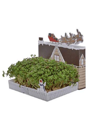 Mini Postcarden - Santa's Grotto ★IDEA!!!grow something ...