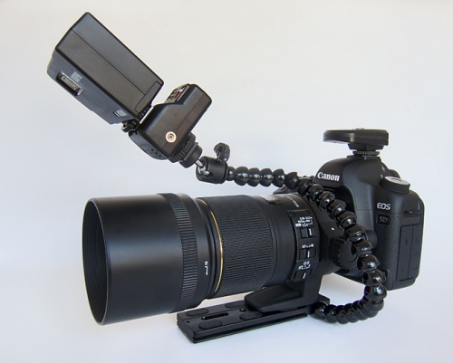 Low-Priced - High Performance Lightweight Canon Macro Flash Set-up