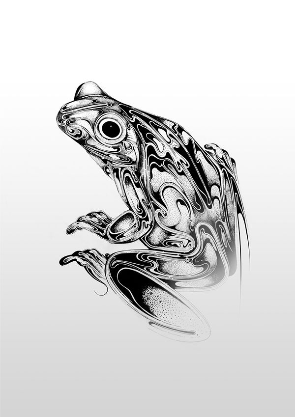 20 Sketch Jungle Frog Tattoos Ideas And Designs