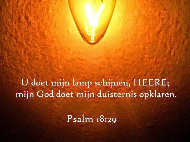 Begrijp je wat je leest?: Wanneer de stekker er niet in zit ... Als christen lijk ik op een lamp. Wanneer de stekker niet (goed) in het stopcontact zit, verspreid ik geen licht en voel ik me op den duur echt gedesoriënteerd.  Als gebed en Bijbellezen vermoeiend en saai worden, praat daar dan eens met God over. Laat je leiden door de Geest de gebeden. Hij is je leraar. Hij zal er voor zorgen dat je stille tijd niet langer lastig is. Hij zal je opnieuw verbinden met het Licht van de wereld.