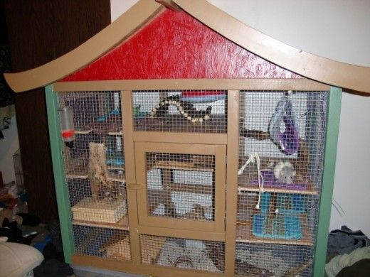 This is the very first cage we built. It was for Nimble and Mozie. When they passed away it became the bottom part of our current cage.
