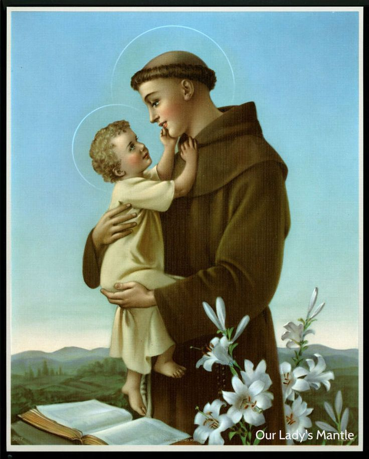 Details about st anthony of padua with child jesus 8x10